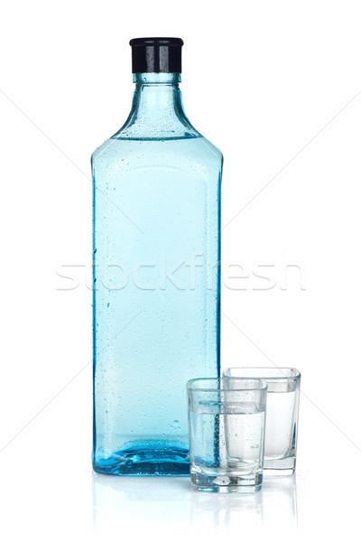 Gin fles twee geïsoleerd witte partij Stockfoto © karandaev