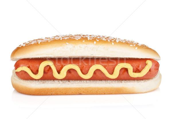 Hot Dog горчица изолированный белый продовольствие собака Сток-фото © karandaev