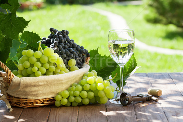White wine glass, red and white grape Stock photo © karandaev