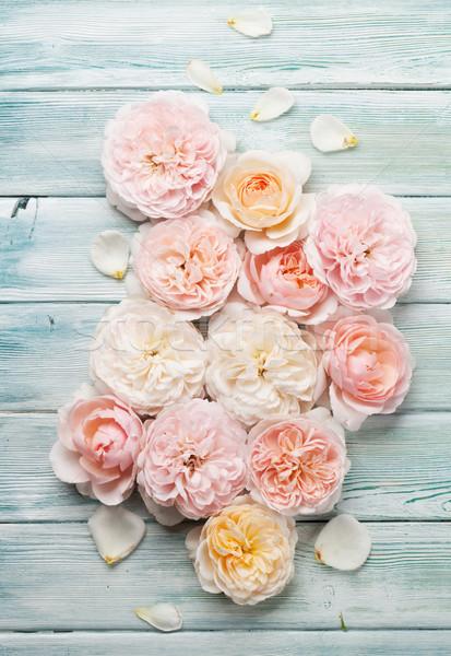 Garden rose flowers on wooden background Stock photo © karandaev