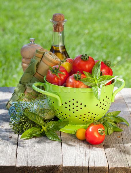 Fresh ripe tomatoes, olive oil bottle, pepper shaker and basil Stock photo © karandaev