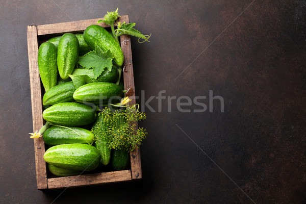 Fresco jardim pepinos cozinhar tabela topo Foto stock © karandaev