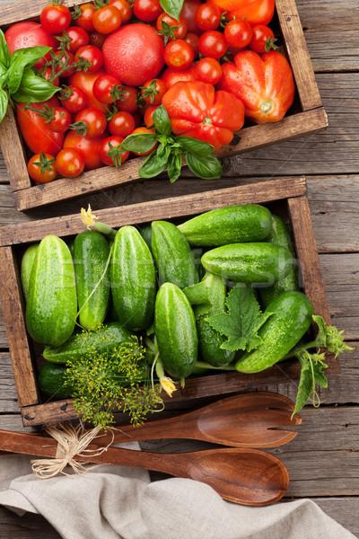 Friss kert paradicsomok uborkák főzés asztal Stock fotó © karandaev