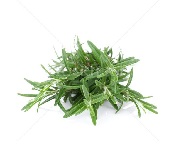 Fresh garden herbs. Rosemary Stock photo © karandaev