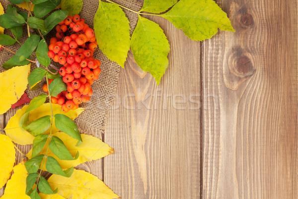 Stok fotoğraf: Sonbahar · yaprakları · karpuzu · ahşap · bo · doğa · arka · plan