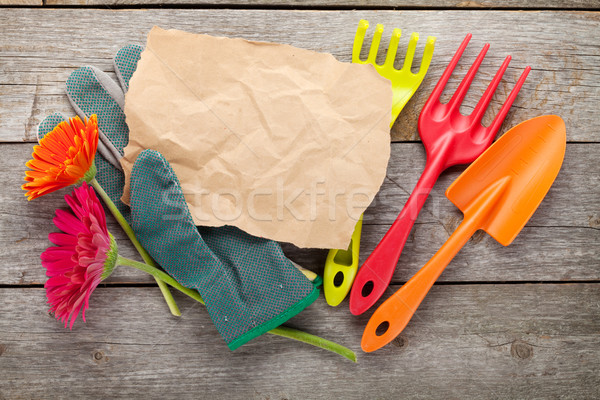 Gardening tools, gloves and gerbera flowers Stock photo © karandaev