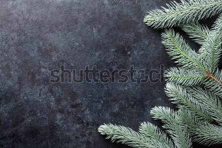 Christmas background with fir tree Stock photo © karandaev