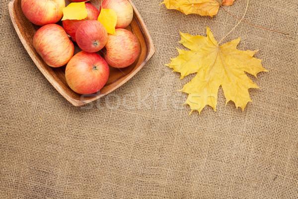 Appels jute textuur exemplaar ruimte natuur Stockfoto © karandaev