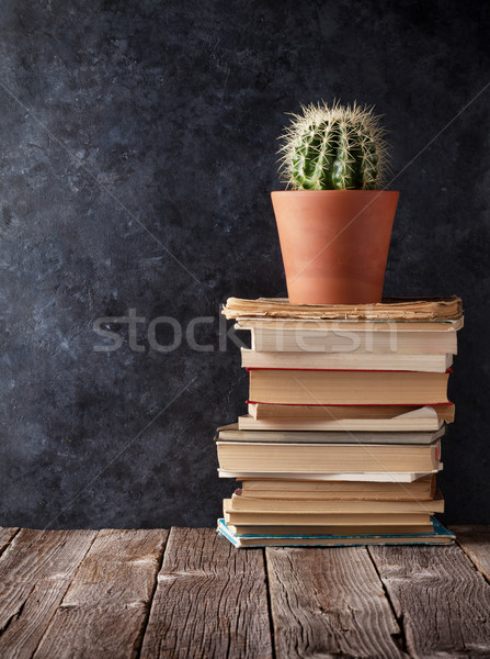 Books and cactus in front of chalk board Stock photo © karandaev