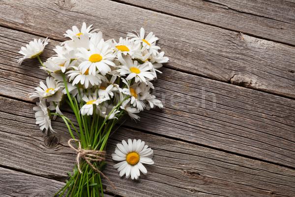 Daisy manzanilla flores madera jardín Foto stock © karandaev