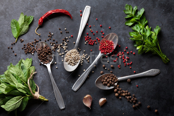 Poivre sel épices menthe persil herbes Photo stock © karandaev