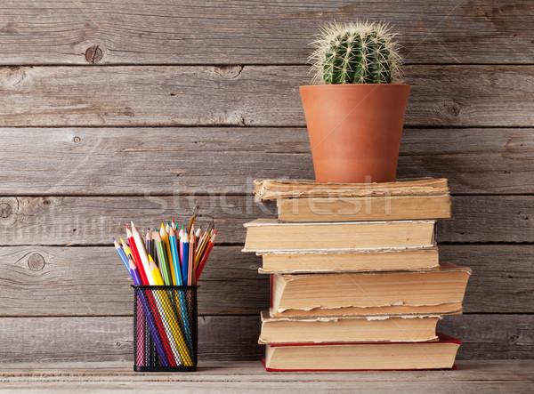 Kaktusz öreg könyvek színes ceruzák fából készült Stock fotó © karandaev