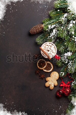 Navidad chocolate caliente malvavisco superior vista Foto stock © karandaev
