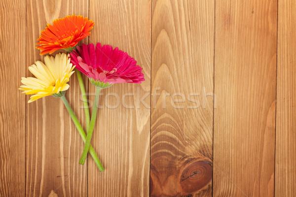 три красочный цветы деревянный стол копия пространства цветок Сток-фото © karandaev