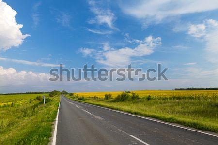 дороги желтый подсолнечника области небе Сток-фото © karandaev