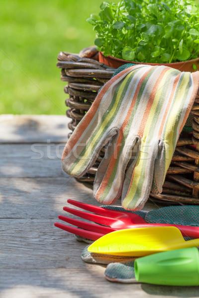 Kerti eszközök palánta kert asztal tavasz farm Stock fotó © karandaev