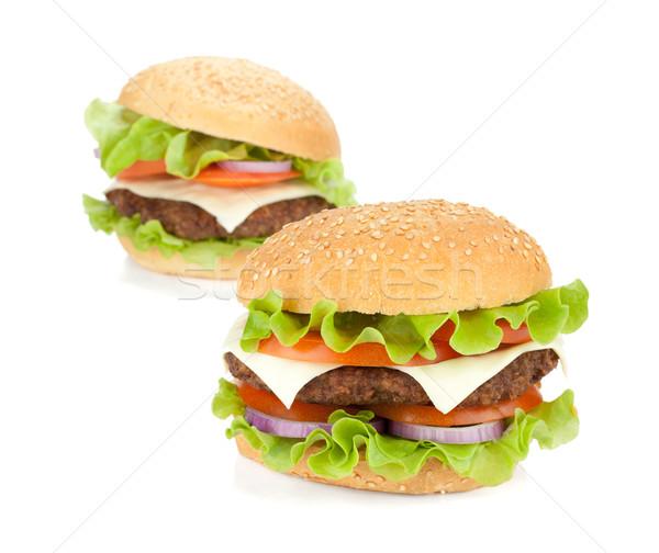 Zwei frischen isoliert weiß Käse Fleisch Stock foto © karandaev