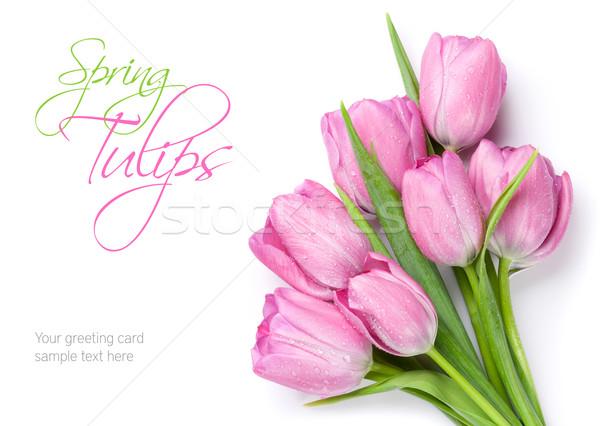 Fresh pink tulip flowers bouquet Stock photo © karandaev