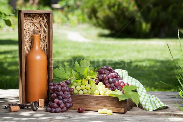 Wijnfles druif outdoor stilleven ruimte voedsel Stockfoto © karandaev