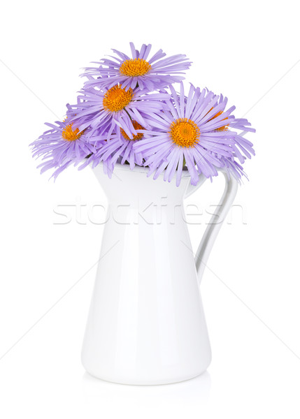 Blue camomile flowers in jug Stock photo © karandaev