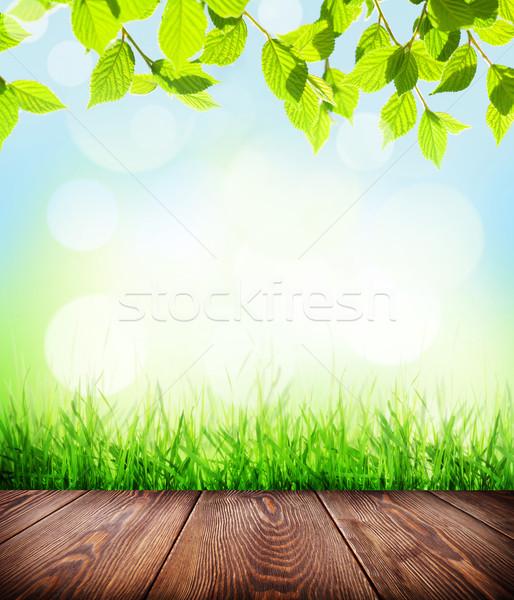 Nyár padló fű bokeh fapadló zöld fű Stock fotó © karandaev