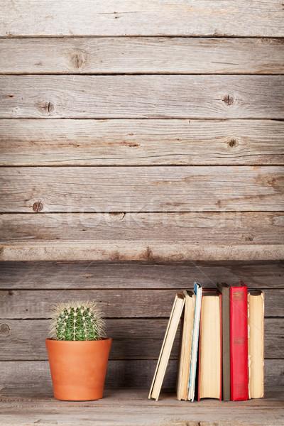 Eski kitaplar ahşap raf kaktüs bitki Stok fotoğraf © karandaev