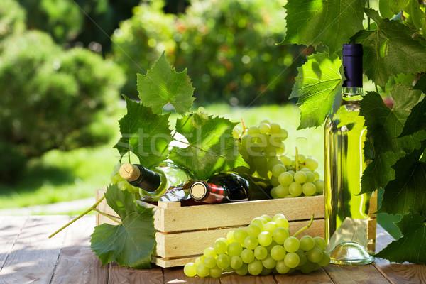 Branco vinho tinto garrafa videira uvas monte Foto stock © karandaev