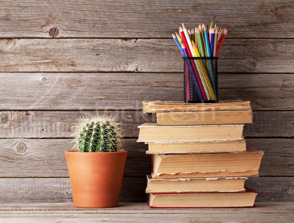 Cactus edad libros colorido lápices Foto stock © karandaev