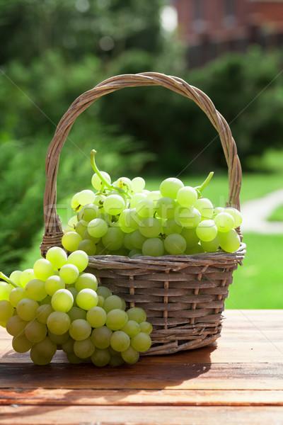 White grape Stock photo © karandaev