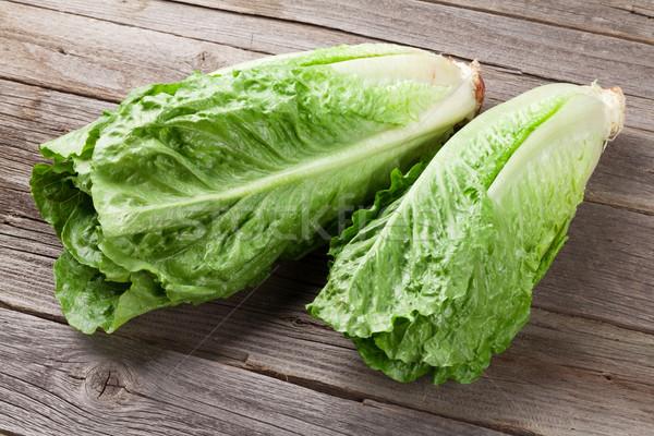 Fresh Romano salad Stock photo © karandaev