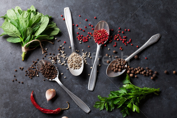 Pepper and salt spices. Mint and parsley herbs Stock photo © karandaev