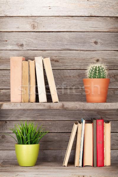 Vecchio libri legno shelf impianti copia spazio Foto d'archivio © karandaev