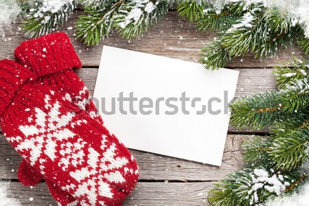 Christmas greeting card, fir tree and mittens Stock photo © karandaev