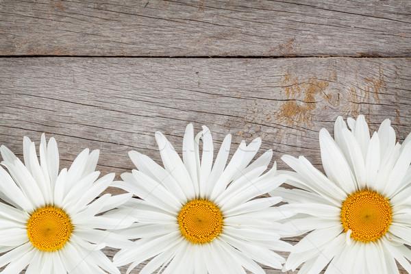 Zdjęcia stock: Daisy · rumianek · kwiaty · drewniany · stół · kopia · przestrzeń · tle