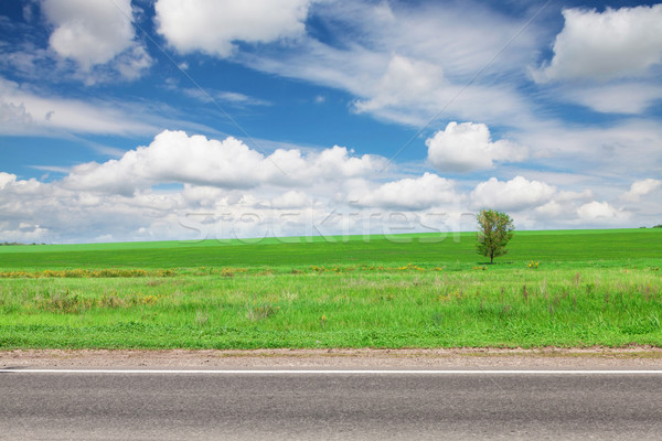 Asphalt road, green grass field and sky with clouds Stock photo © karandaev