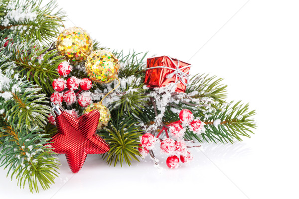 Christmas fir tree branch with holly berry and decor Stock photo © karandaev