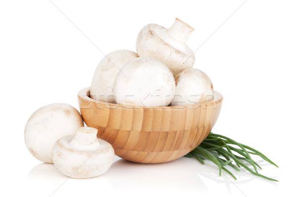 Tazón champiñón setas aislado blanco Foto stock © karandaev