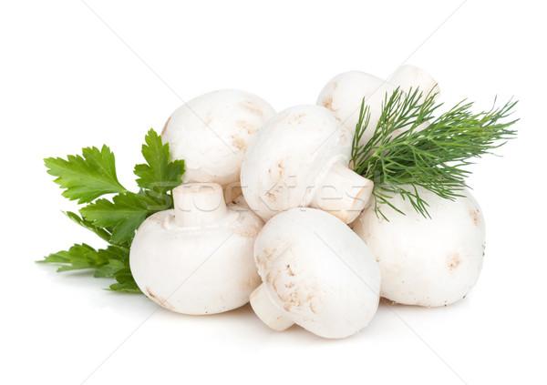 Stockfoto: Hoop · champignon · champignons · kruiden · geïsoleerd · witte