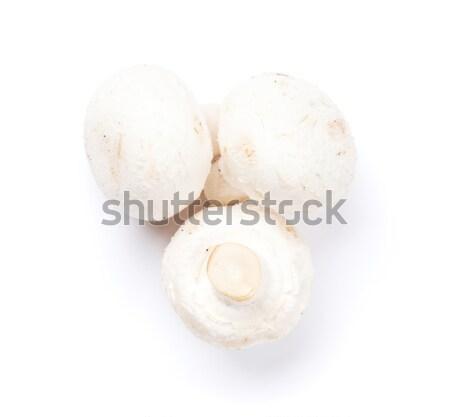 Champiñón setas aislado blanco planta estudio Foto stock © karandaev
