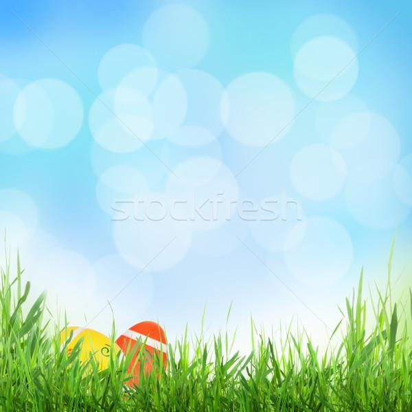 Pascua soleado primavera huevos hierba textura Foto stock © karandaev