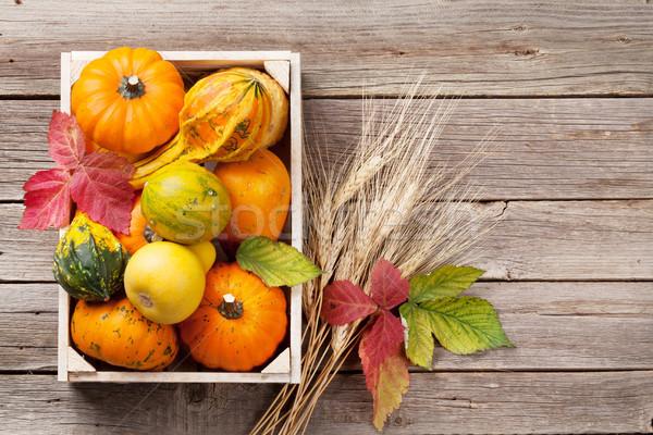 Autumn pumpkins on wooden table Stock photo © karandaev