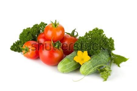 Olgun domates salatalık maydanoz yalıtılmış beyaz Stok fotoğraf © karandaev