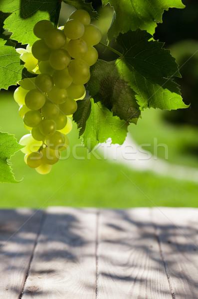 Wijnstok bos witte druiven tuin hout Stockfoto © karandaev
