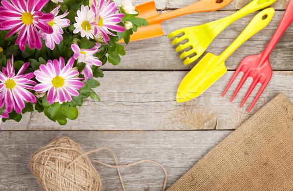 Photo stock: Jardin · outils · jardin · de · fleurs · fleur · table · en · bois · espace · de · copie