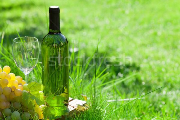 White wine and grapes Stock photo © karandaev