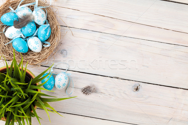 Easter background with blue and white eggs in nest Stock photo © karandaev