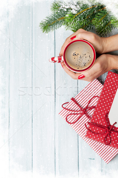 Female hands holding coffee cup Stock photo © karandaev