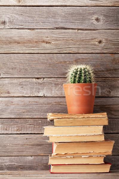 Kaktusz öreg könyvek fából készült fal copy space Stock fotó © karandaev