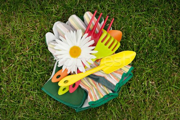 Giardino strumenti camomilla giardino fiorito fiore erba verde Foto d'archivio © karandaev
