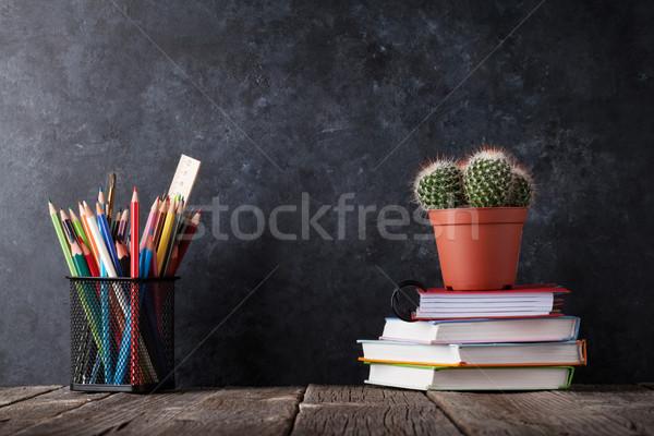 Cacto giz conselho de volta à escola cópia espaço Foto stock © karandaev